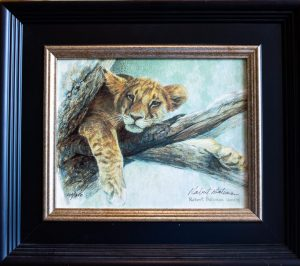 Up the Tree Lion Cub by Robert Bateman (framed)