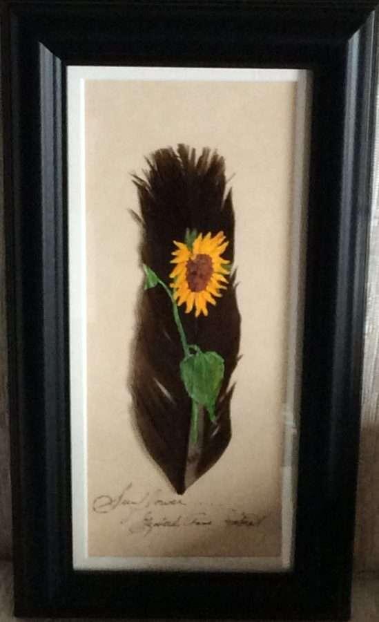 Sunflower - Betty Hebert