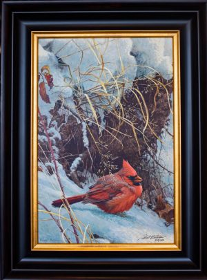Winter Cardinal by Robert Bateman (framed)