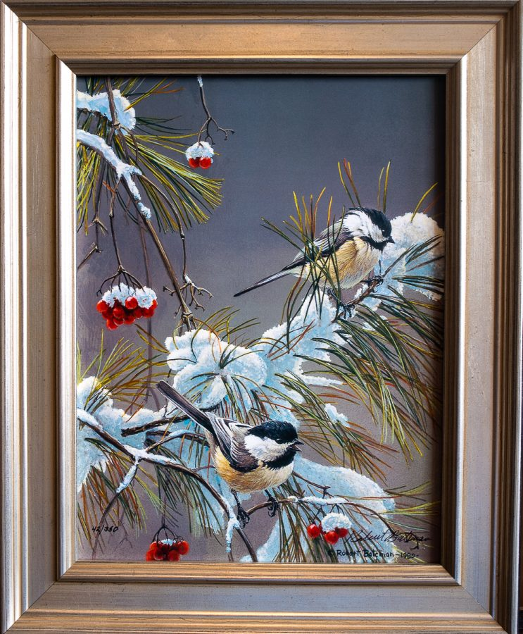 Winter Song Chickadees - Robert Bateman