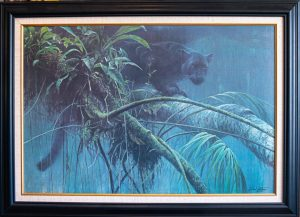 Shadow of The Rainforest by Robert Bateman at The Gallery Upstairs