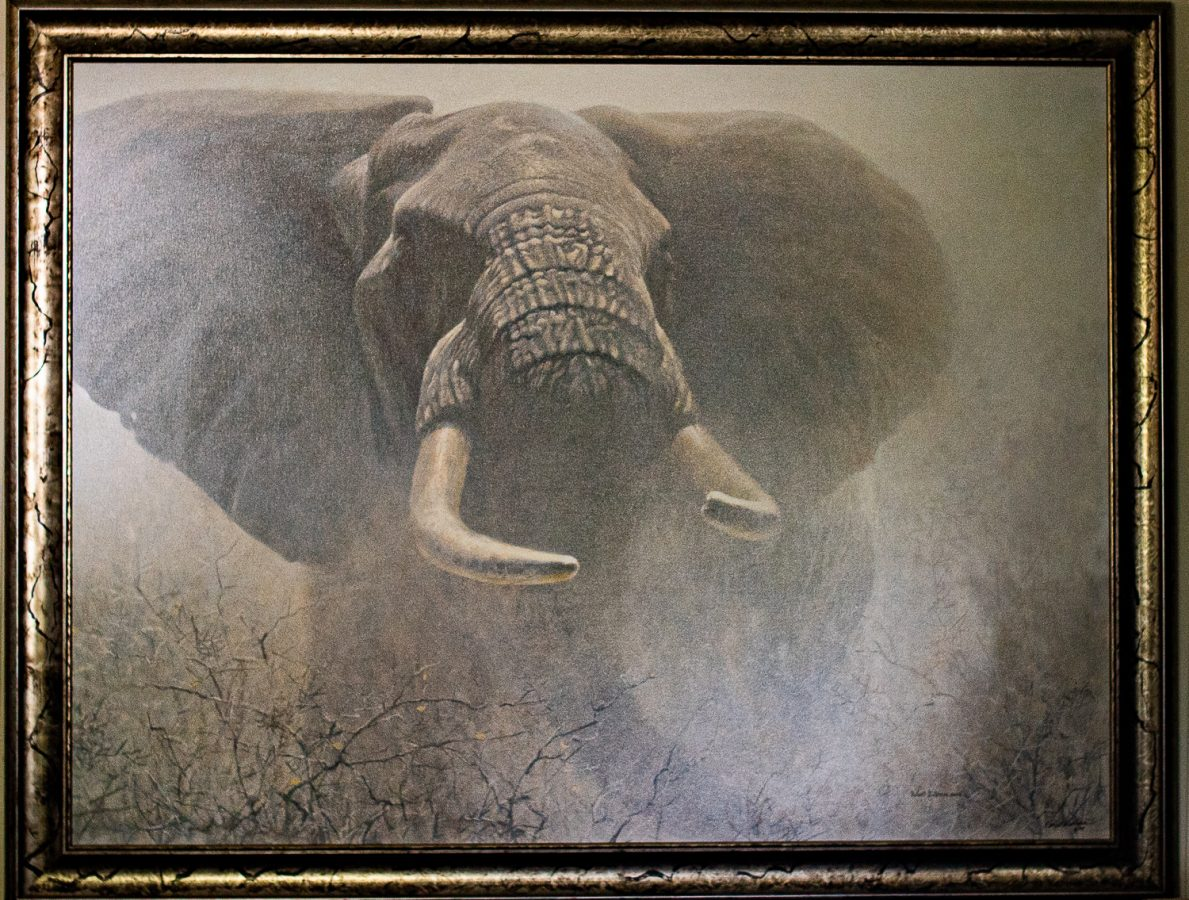 Tembo by Robert Bateman oversized at The Gallery Upstairs