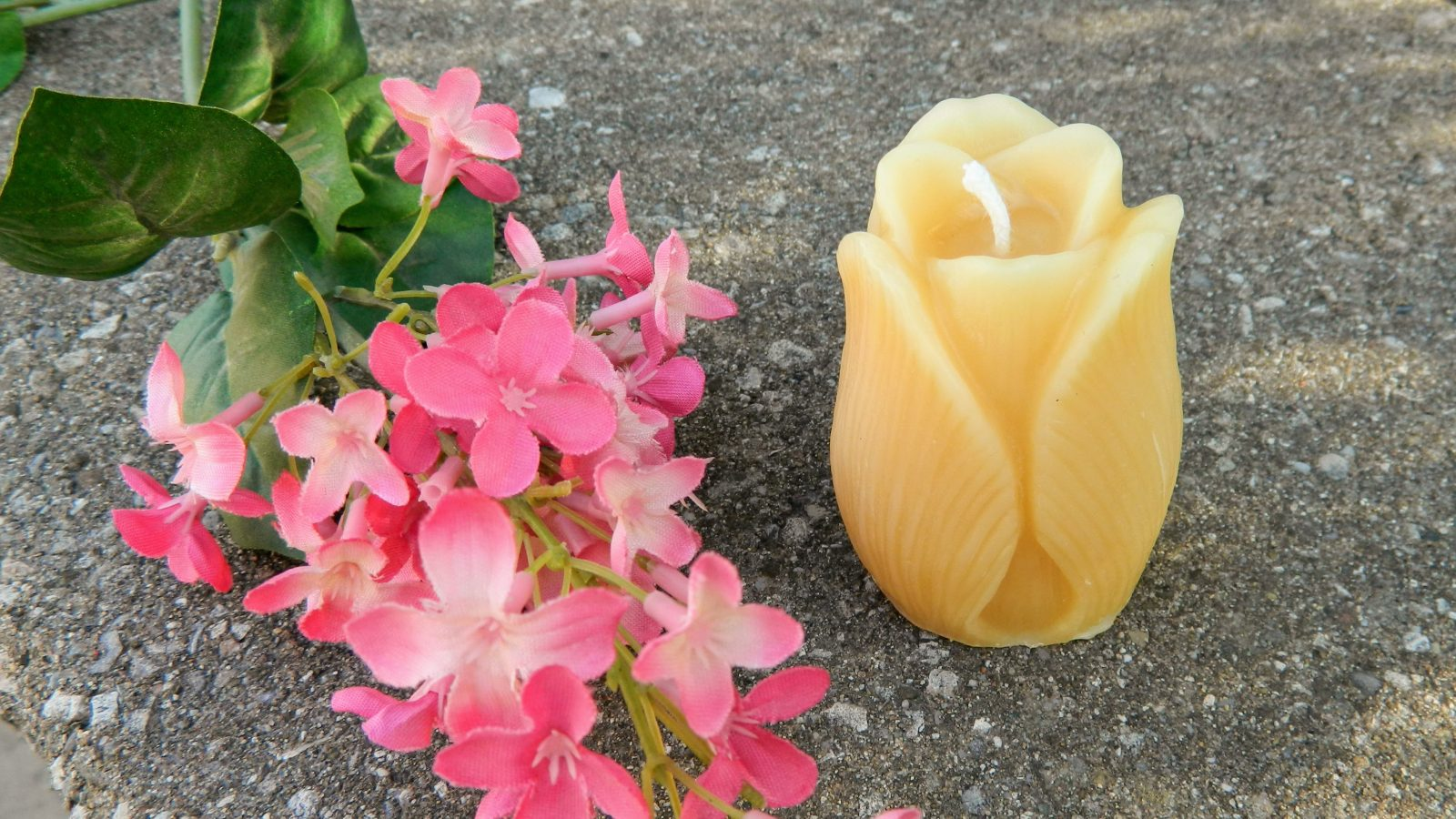 Tulip flower candle 100% beeswax