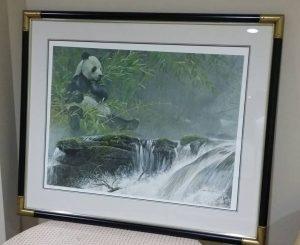 Giant Panda framed art from Robert Bateman