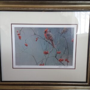 Highbush & cranberries cardinal (framed print) signed by artist Robert Bateman