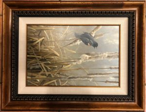 Bateman Red wing Blackbird and Cattails_SOLD