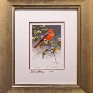 cardinal and snowberries - framed print by Robert Bateman
