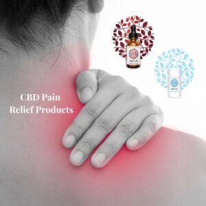 CBD Pain Relief Products