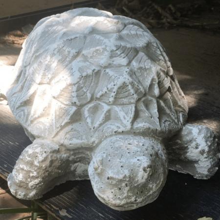 Cement Turtle garden art